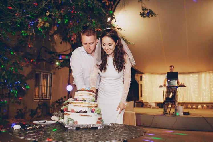 NOVO ŽIVLJENJE - NOV JEDILNIK Pred poroko ste morda še dodatno pazili na prehrano, da boste v poročni obleki zares …