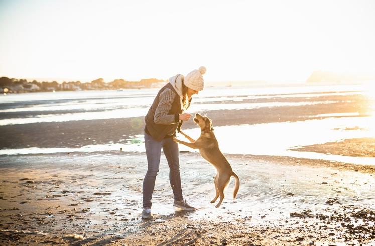 PREŽIVITE ČAS S HIŠNIM LJUBLJENČKOM Živali (še posebej, če imate psa) vas lahko motivirajo, da se več gibate in s …
