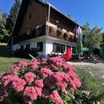 Vogar: najlepši razgled na Bohinjsko jezero, za 110 € pa lahko v tandemu odjadrate v dolino (foto: DDD)