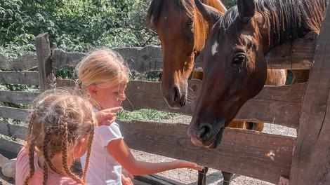 Aktivni počitniški tabor za otroke: pohodi, skrb za živali, pečenje kostanja ...