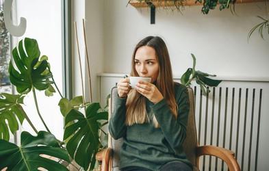 Kaj se zgodi, če vsak dan pijete komarčkov čaj