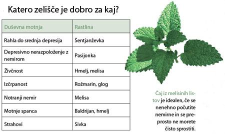Rastline za dušo